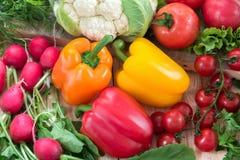 Vegetais diferentes como tomates, couve-flor, pimentas, rabanetes, tomates de cereja Imagem de Stock