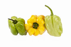 Vegetais do habanero amarelo e verde pequeno da pimenta de pimentão Imagens de Stock