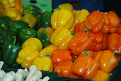 Vegetais do mercado dos fazendeiros Fotografia de Stock Royalty Free