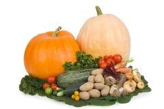Vegetais do outono. Imagens de Stock