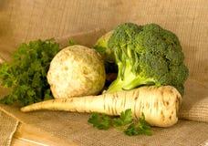 Vegetais do outono Imagens de Stock Royalty Free
