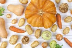 Vegetais do outono no fundo branco Imagem de Stock