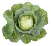 Vegetais do repolho com folhas Imagem de Stock Royalty Free