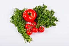 Vegetais do tomate com as folhas do aneto e da salsa Fotografia de Stock