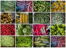 Vegetais do verão imagens de stock royalty free