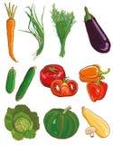 Vegetais do vetor ajustados Ingredientes de alimento Fotografia de Stock