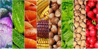 Vegetais dos alimentos de Healhy Imagens de Stock