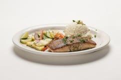 Vegetais dos peixes e batatas trituradas Imagens de Stock