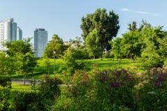 Vegetais e animal no parque em Roosevelt Island em New York City Foto de Stock Royalty Free