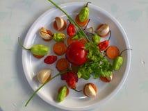 Vegetais e arte culinária Fotografia de Stock Royalty Free