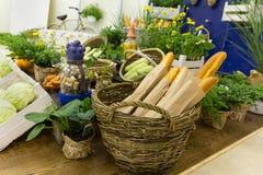 Vegetais e baguettes em um contador estilizado Imagens de Stock Royalty Free