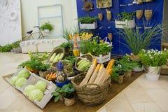 Vegetais e baguettes em um contador estilizado Fotos de Stock