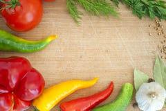 Vegetais e beira das especiarias Fotografia de Stock