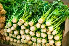 Vegetais e ervas verdes frescos diferentes na exposição exterior no ritmo do mercado de Tel Aviv, Israel Foco seletivo, espaço pa Fotos de Stock
