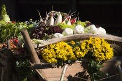 Vegetais e flores Foto de Stock