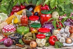 Vegetais e frutos enlatados Fotografia de Stock Royalty Free