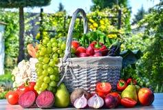 Vegetais e frutos orgânicos frescos no jardim Fotografia de Stock