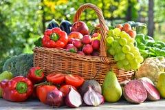 Vegetais e frutos orgânicos frescos no jardim Imagem de Stock Royalty Free