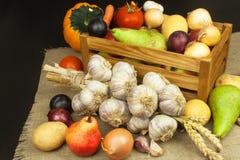 Vegetais e maçãs na tabela de madeira Colheita do outono na exploração agrícola Uma dieta saudável para crianças Imagem de Stock