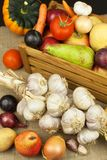 Vegetais e maçãs na tabela de madeira Colheita do outono na exploração agrícola Uma dieta saudável para crianças Imagens de Stock