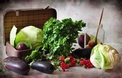 Vegetais e mala de viagem Imagem de Stock