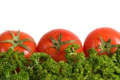 Vegetais e verdes do tomate isolados no branco fotos de stock