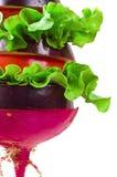 Vegetais em um cuspo fotografia de stock royalty free