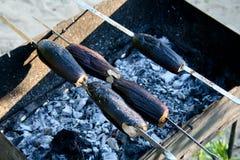 Vegetais em um fogo Imagens de Stock Royalty Free
