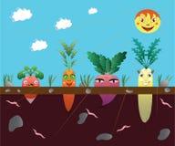 Vegetais em uma horta. ilustração royalty free