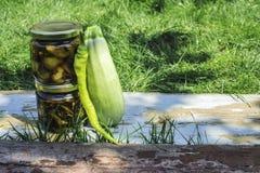 Vegetais enlatados Imagem de Stock