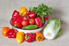 Vegetais, erva-doce e salsa em uma bacia e sobre ela Foto de Stock
