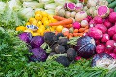 Vegetais, ervas e salada Fotografia de Stock Royalty Free