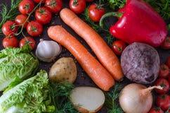Vegetais frescos da mola para pratos dietic Fotografia de Stock