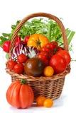 Vegetais frescos do jardim. imagem de stock