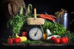 Vegetais frescos do verão fotografia de stock royalty free