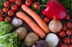 Vegetais frescos e coloridos Foto de Stock Royalty Free