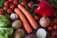 Vegetais frescos e coloridos do verão Fotos de Stock