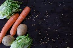 Vegetais frescos e orgânicos da mola do verão Imagens de Stock
