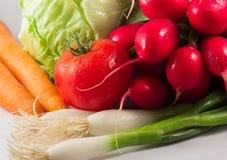 Vegetais friáveis Fotos de Stock