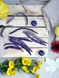 Vegetais, frutos, flores e folhas olorful do ¡ de Ð na superfície de texturas diferentes foto de stock royalty free