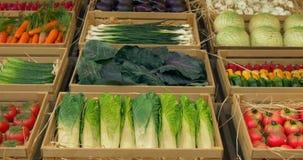 Vegetais Garland Boxes vídeos de arquivo