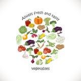 Vegetais isolados em um círculo Graphhics do vetor ilustração royalty free