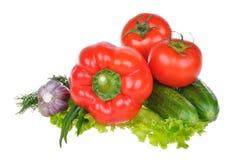 Vegetais isolados no fundo branco Imagem de Stock