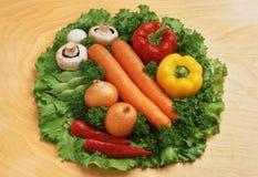 Vegetais lavados: cenouras, pimentas de sino, paprika, cebolas, malagueta picante, vagens de feijão foto de stock