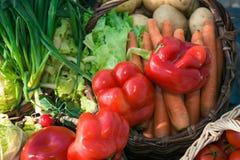 Vegetais maduros na cesta Fotos de Stock Royalty Free