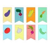 Vegetais na ilustração do vetor das bandeiras Fotografia de Stock