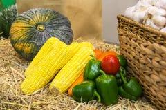 Vegetais na palha Fotos de Stock