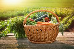 Vegetais na tabela na cesta Imagens de Stock Royalty Free