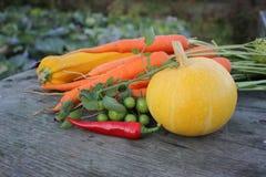 Vegetais na tabela rústica Foto de Stock