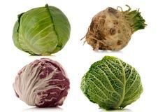 Vegetais no fundo branco Foto de Stock